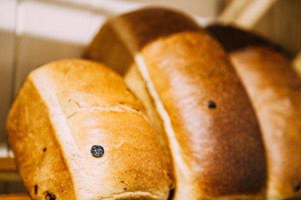 Bakertom, cinnamon, raisin, 2017, bakertoms, bakery